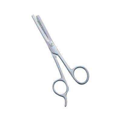 Professional Thinning Scissors